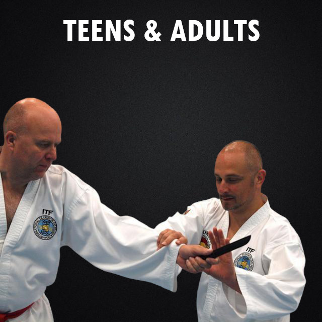Taekwon-Do Teens and Adults